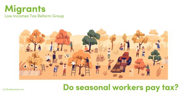 Illustration of seasonal workers
