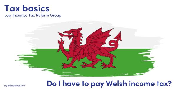 Illustration of the Welsh dragon