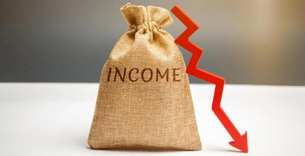 bag of income with downwards arrow