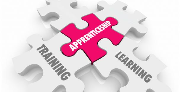 Illustration of jigsaw pieces displaying the words apprenticeship, training and learning