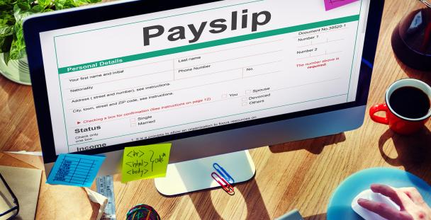 Image of a sample payslip on a computer screen